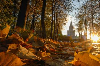 В Москве установлен температурный рекорд за 140 лет