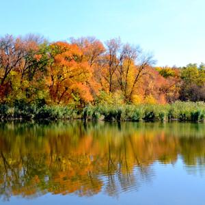 Пруды наполняются водой из притока речки Кизитеринки.