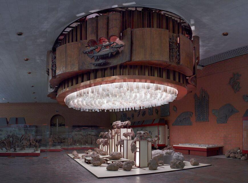 Цена билетов в палеонтологический музей в москве официальный сайт кино афиша г чита