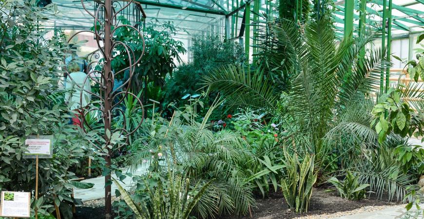 Вологодский ботанический сад «Ботаника»