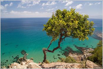 Турпоток на Кипр достиг исторического максимума