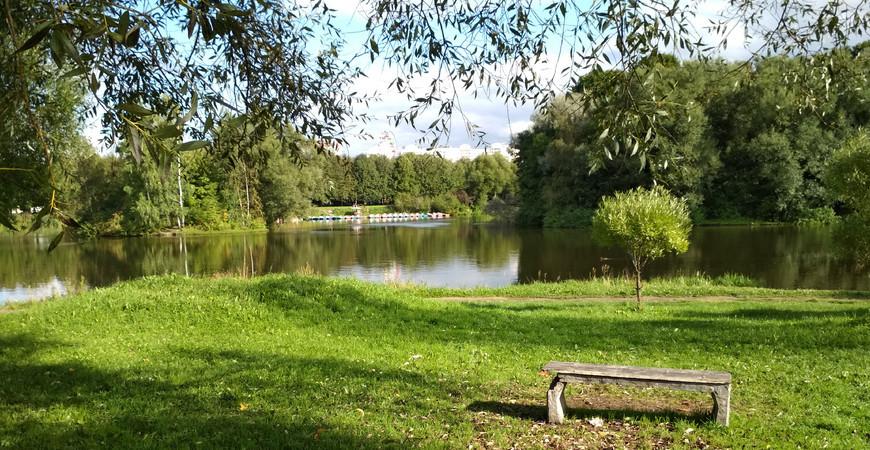 Южно-Приморский парк в Санкт-Петербурге