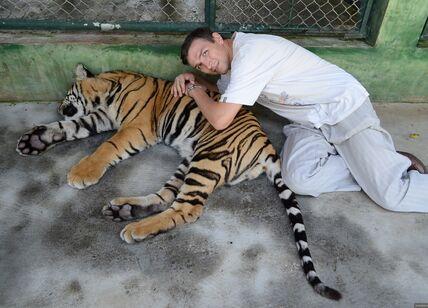 Парк «Королевство тигров» на Пхукете