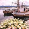 Лодки Викингов. Uniktur