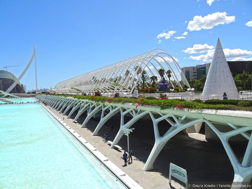 L'Umbracle — галерея, ботанический сад на верхнем уровне.  В конусах находятся лифты, соединяющие нижний и верхний уровни.