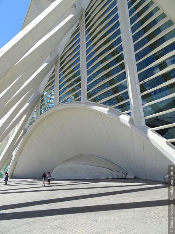 """Торцевая часть здания Музея наук - опять возникают """"морские"""" аналогии с раковиной."""