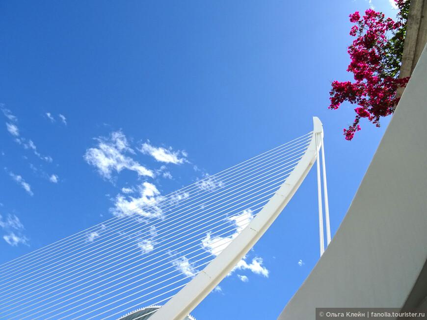 Изящный элемент конструкции моста Pont de l'Assut de l'Or
