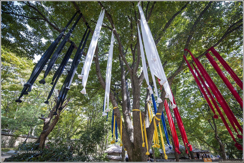 Видимо, какая-то традиция - забрасывать ленты с камне на конце на деревья... Вот еще одна загадка - для чего?, Загадки корейской этно-деревни (часть вторая)