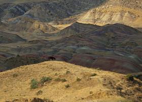 Монахи, скалы и цветные пески. Давид-Гареджи!