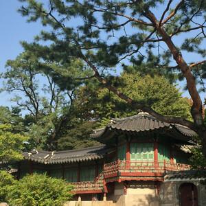 Несколько октябрьских дней в Южной Корее