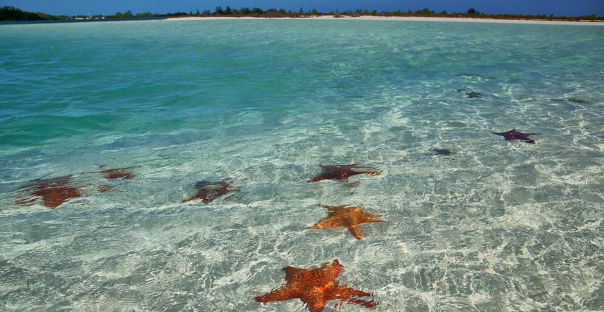 Пляж Лос Кокос (Playa Los Cocos)