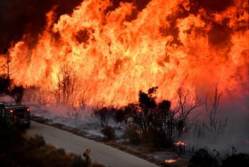 В Калифорнии потушили крупнейший лесной пожар в истории