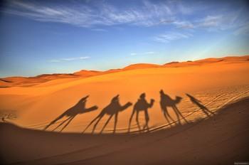 С начала года турпоток в Марокко вырос
