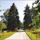 Дендрологический парк на Первомайской