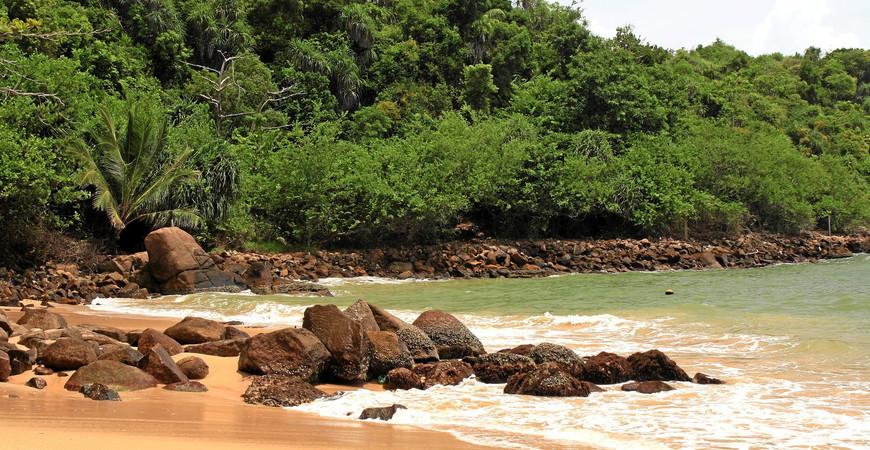 Пляж Джангл Бич (Jungle Beach)