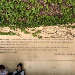 Невообразимая цветущая Альгамбра