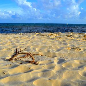 Прогулка вдоль побережья Карибского моря
