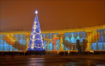 В Петербурге к Новому году установят 66 елей