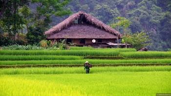 Туристов предупреждают об ухудшении погоды во Вьетнаме