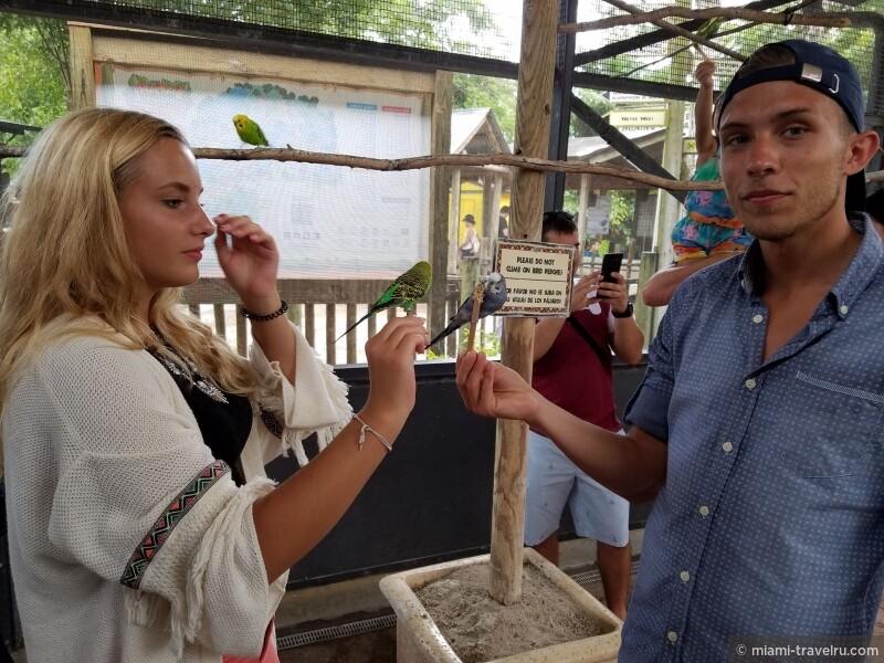 майами экскурсии майами гид.jpg