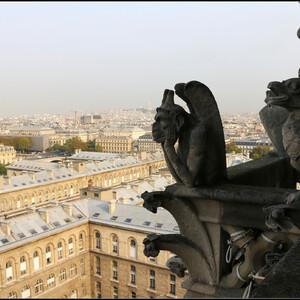 Нотр-Дам де Пари, вид сверху.