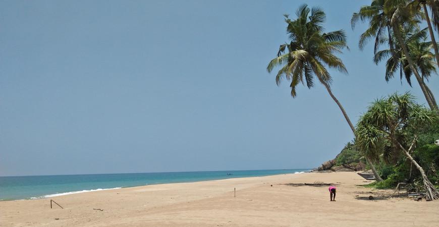 Пляж Косгода (Kosgoda Beach)