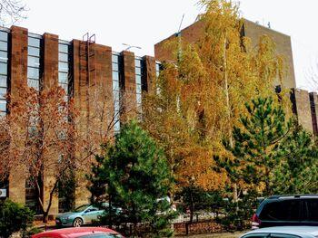 Донская библиотека