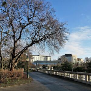 Вена в январе