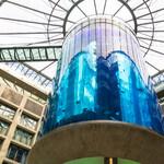 Аквариум в Берлине «АкваДом»