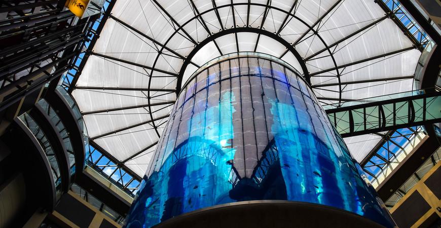 Аквариум в Берлине «АкваДом» (AquaDom)
