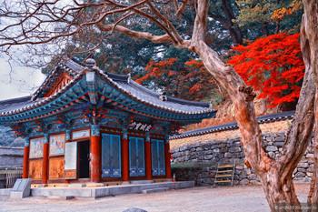 Спрос на туры в Южную Корею у туристов из РФ значительно вырос