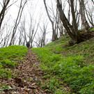 Национальный парк Тбилиси