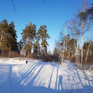 Сказочная зима в Западной Сибири