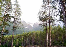 Зеленый наряд Приэльбрусья.Терскол