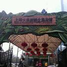 Шанхайский террариум