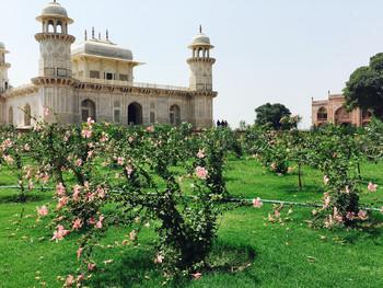 Рядом с Тадж-Махалом открылись старинные королевские сады