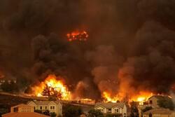 Из-за аномальной жары в Австралии начались лесные пожары