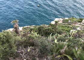 Тропа Ками де Ронда: участок Кап де Салоу