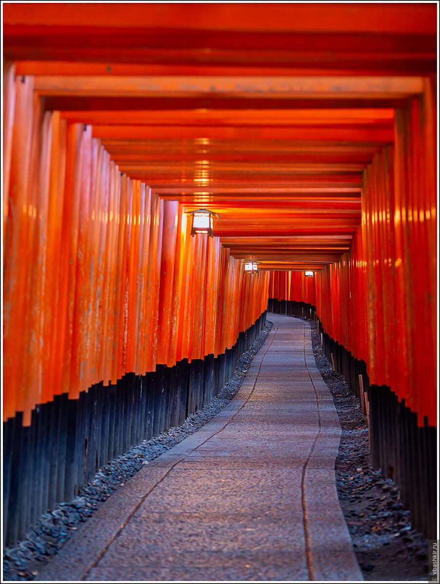 Тории в Фусими Инари., Исчезающий ниндзя или Киото+