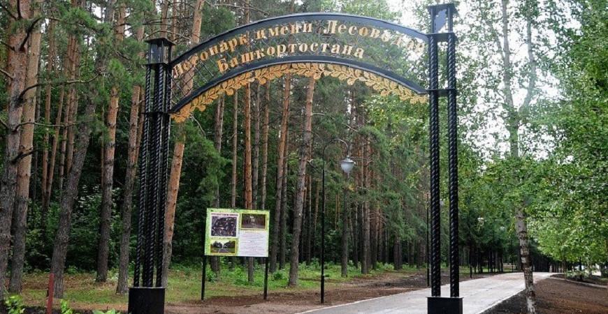 Парк Лесоводов Башкирии в Уфе