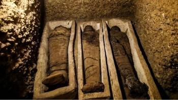 В Египте археологи нашли гробницу c 50 мумиями, 12 из которых — дети