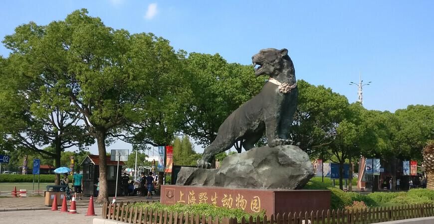 Сафари-парк Shanghai Wild Animal Park