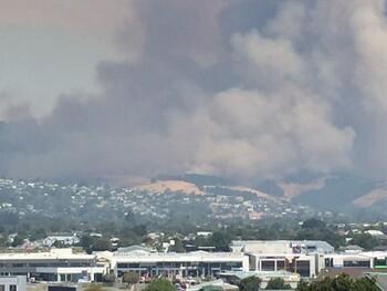 В Новой Зеландии бушуют сильнейшие за 60 лет лесные пожары