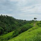 Холм Чампухан