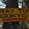 Дорога к Гокио