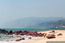 В Гоа хотят компенсировать туристам часть стоимости визы