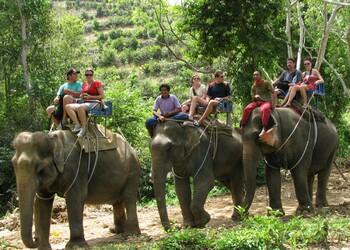 В Таиланде на туристов напал агрессивный слон