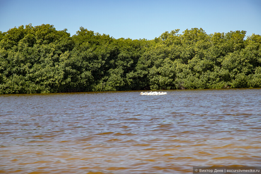 Национальный парк Селестун