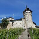 Крепость Мунот