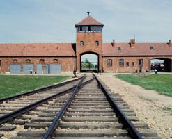 Музей Аушвиц-Биркенау в Освенциме временно закрыт для посетителей
